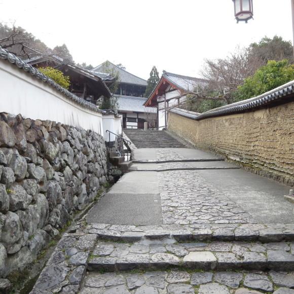 東大寺の思い出フォトグラフ_c0001670_14172988.jpg