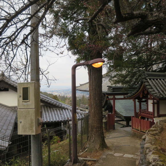 東大寺の思い出フォトグラフ_c0001670_14180497.jpg