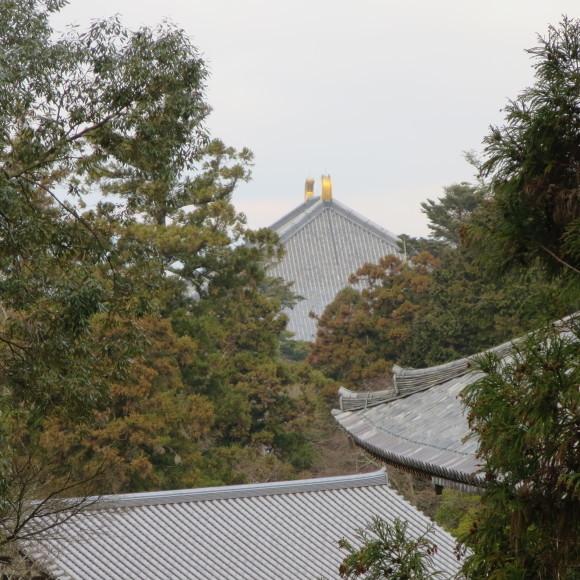 東大寺の思い出フォトグラフ_c0001670_14180725.jpg