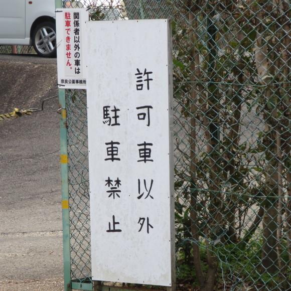 東大寺の思い出フォトグラフ_c0001670_14190681.jpg