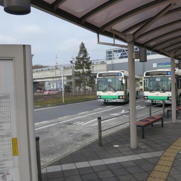 奈良から京都へ行くだけの話と無理くりアインシュタイン_c0001670_14543043.jpg