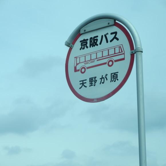 奈良から京都へ行くだけの話なのに結局四条畷とかどこいっとんねんちゅう話。_c0001670_14562708.jpg