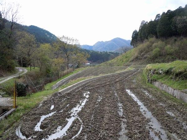新緑の里山を歩く_b0102572_1024549.jpg