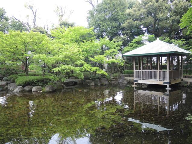 太田黒公園に行きました_e0232277_16464113.jpg
