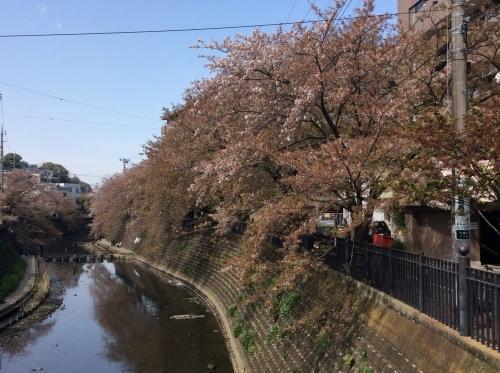 ぶらり横浜 その22 弘明寺散歩 その8_e0021092_10380882.jpg