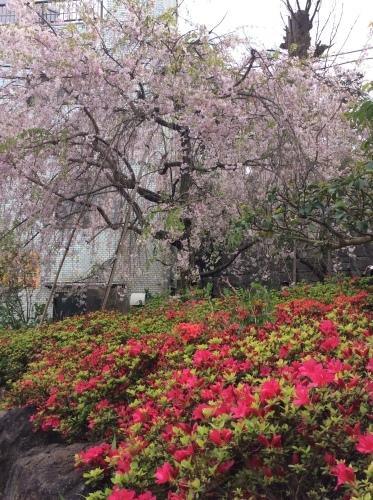ぶらり横浜 その22 弘明寺散歩 その8_e0021092_10395788.jpg