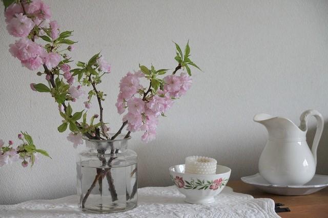 お花見弁当 2017_f0374092_16050590.jpg