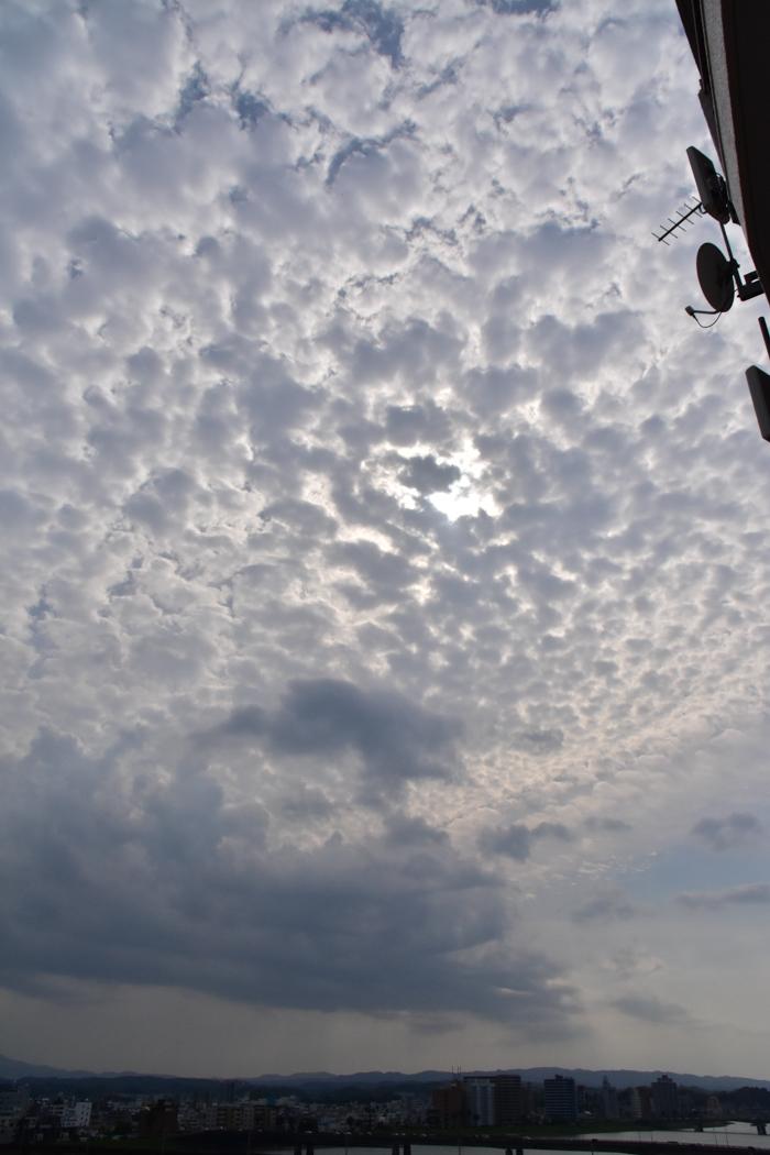 朝起きたら雨だったので・・・ (-_-)_c0049299_22333695.jpg