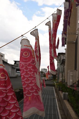 キミと過ごした町も桜咲く春だよ_b0259218_00254450.jpg