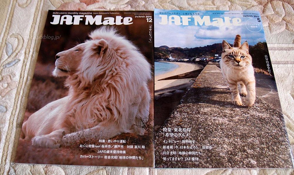JAF MATE_f0250322_1239571.jpg