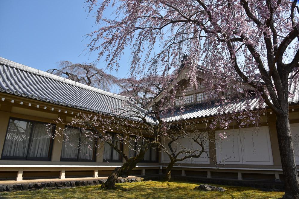京都初日、Ⅱ_e0367330_21254059.jpg