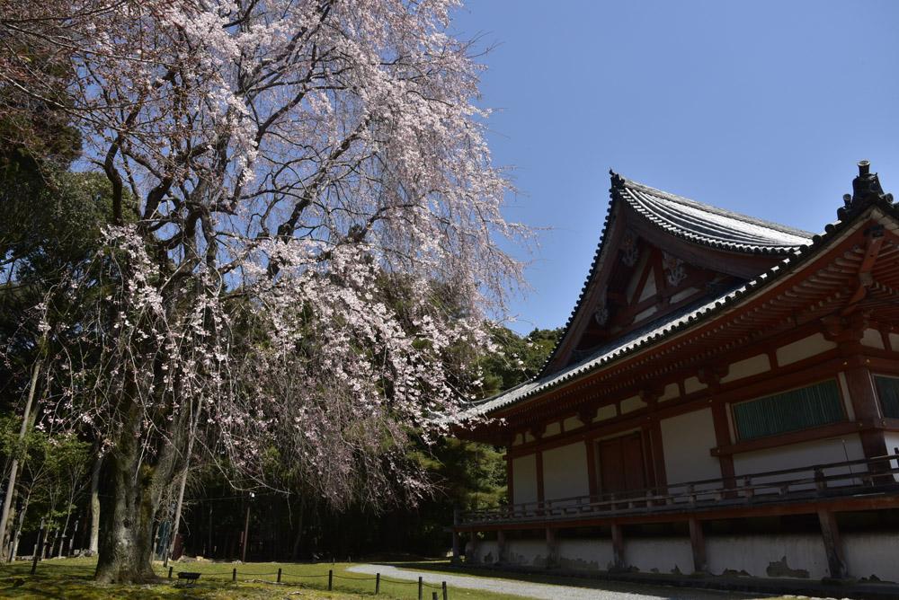 京都初日、Ⅱ_e0367330_2128315.jpg