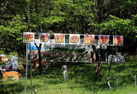 ほのぼの動物園と花の園_e0155240_16533462.jpg