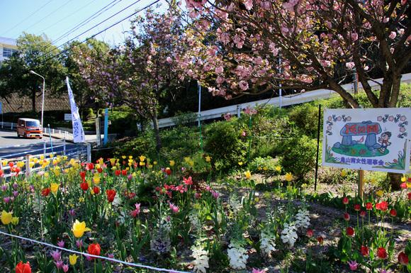 ほのぼの動物園と花の園_e0155240_16535226.jpg