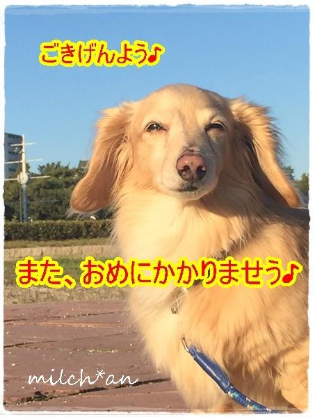 b0115642_22044454.jpg