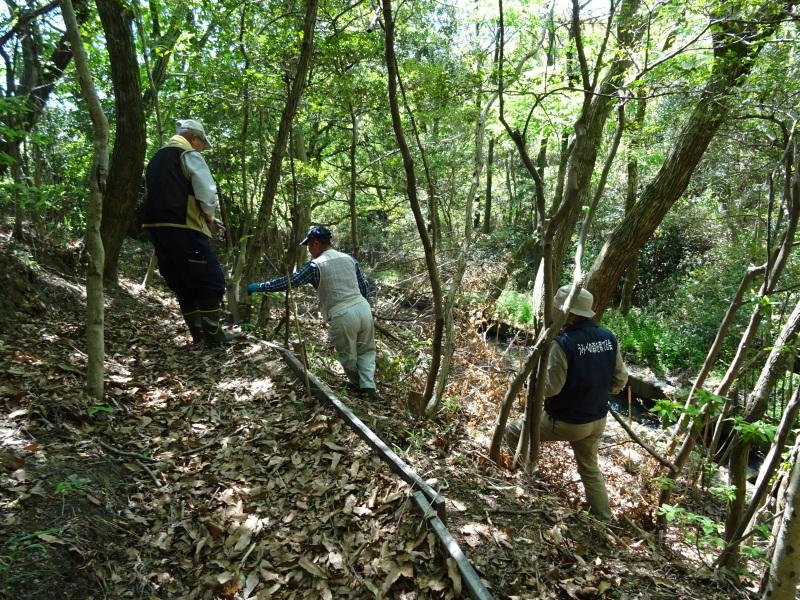 急斜面の笹刈り・・・うみべの森_c0108460_21124116.jpg