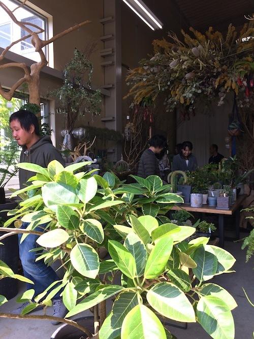 「フタムラグリーン」春の展示会2017_f0324766_18433656.jpg