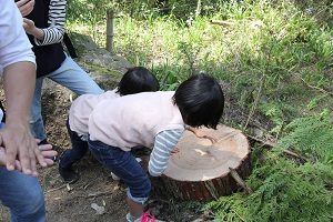 阿蘇小国町へ森林ツアーに行ってきました♪_b0112371_1710161.jpg