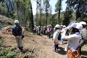 阿蘇小国町へ森林ツアーに行ってきました♪_b0112371_1784130.jpg