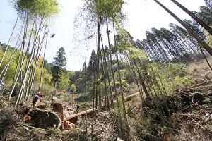 阿蘇小国町へ森林ツアーに行ってきました♪_b0112371_179947.jpg