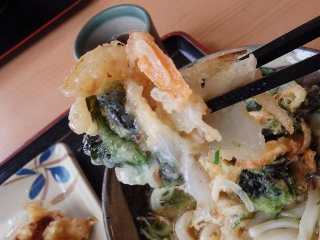 讃岐製麺        箕面半町店_c0118393_9513185.jpg