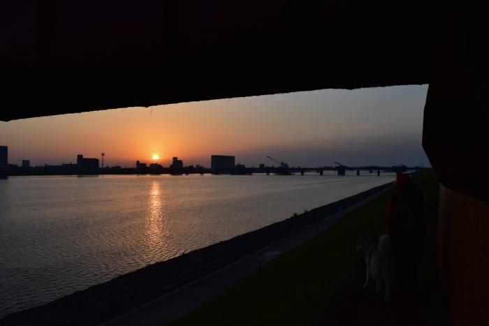 オレンジの朝、青い空、ちょっと寒くてはなちゃんごきげん♡_c0049299_21594901.jpg