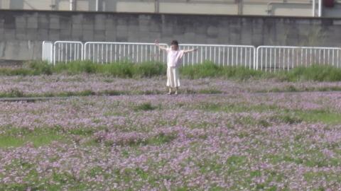 4/22(土) 三島江 菜の花 & レンゲ畑 散策〜_a0059812_22230880.jpg