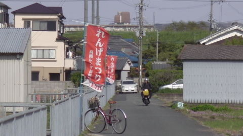 4/22(土) 三島江 菜の花 & レンゲ畑 散策〜_a0059812_22234141.jpg