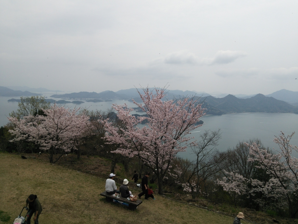 佐木島(大平山)_c0339918_10490393.jpg
