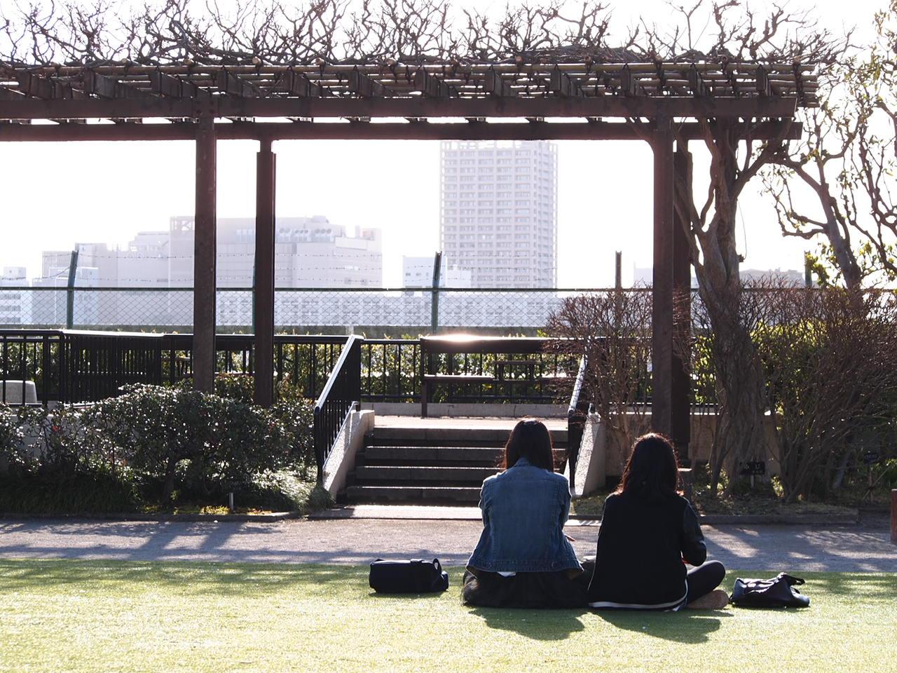 葛飾区小菅公園の春 2。_a0214329_14302447.jpg