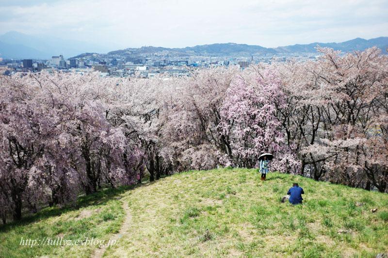 弘法山(1)_d0108132_2335478.jpg