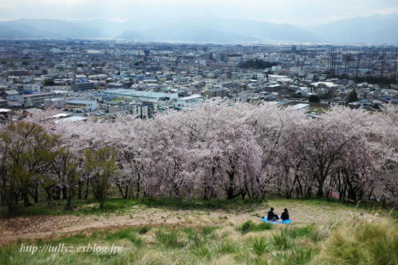 弘法山(1)_d0108132_2335854.jpg