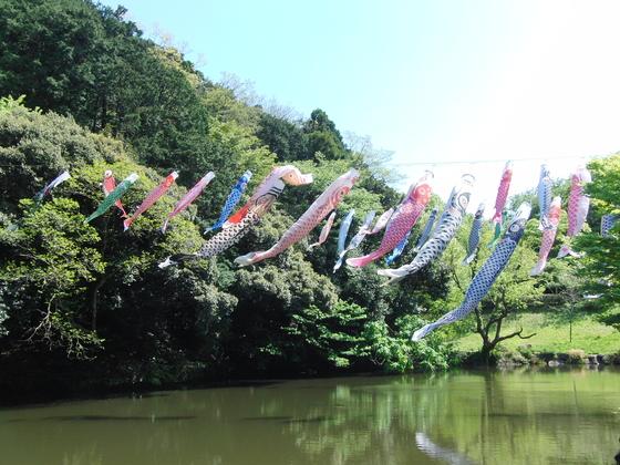 外出レク ~ 鎌倉中央公園 ~_e0222340_1613155.jpg
