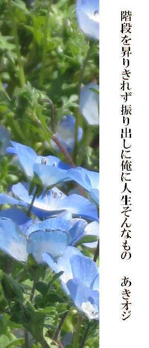 f0117041_04141639.jpg