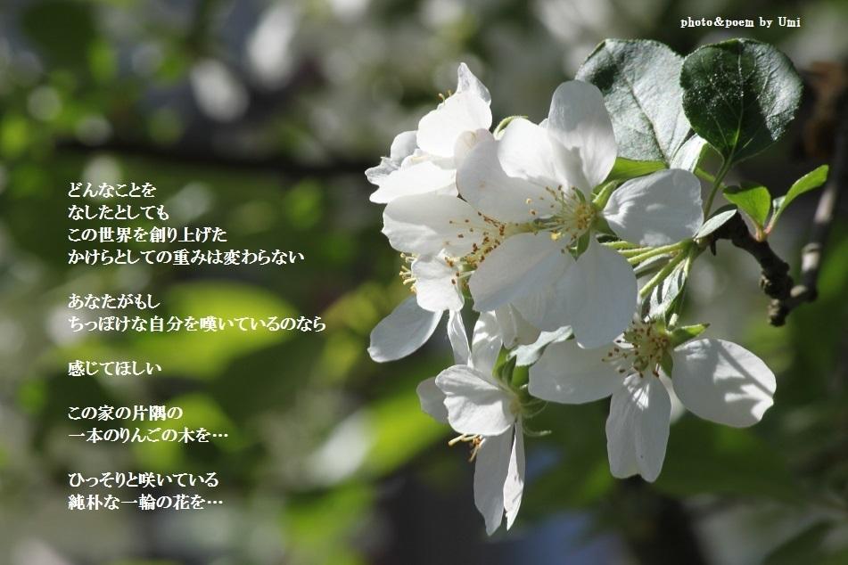 f0351844_09532975.jpg