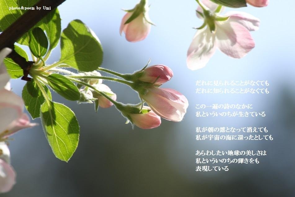 f0351844_09540274.jpg