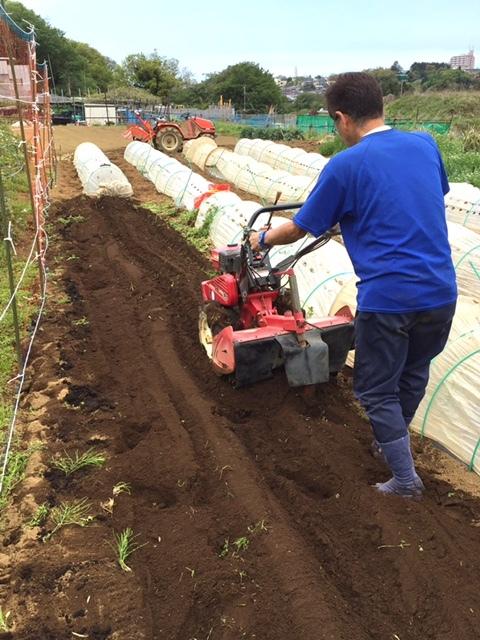 今日からはインゲン豆の畝作りです・・_c0222448_14110629.jpg