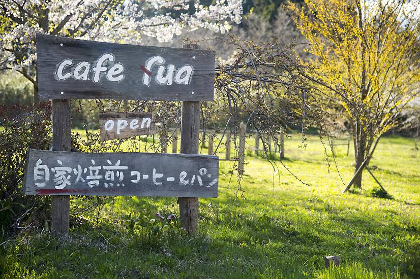 春の庭・・・cafe fua_e0271864_9165470.jpg
