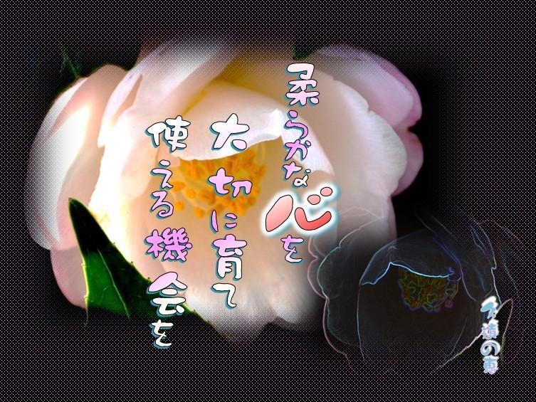 f0214467_10232056.jpg