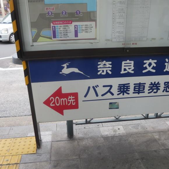 奈良から京都へ行くだけの話と無理くりアインシュタイン_c0001670_18071565.jpg