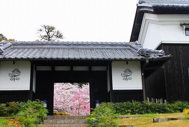 石上神宮から奈良へ_f0374092_21063520.jpg