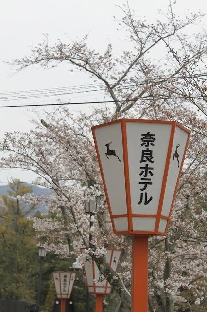 石上神宮から奈良へ_f0374092_21420118.jpg