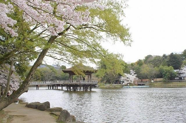 石上神宮から奈良へ_f0374092_21433541.jpg
