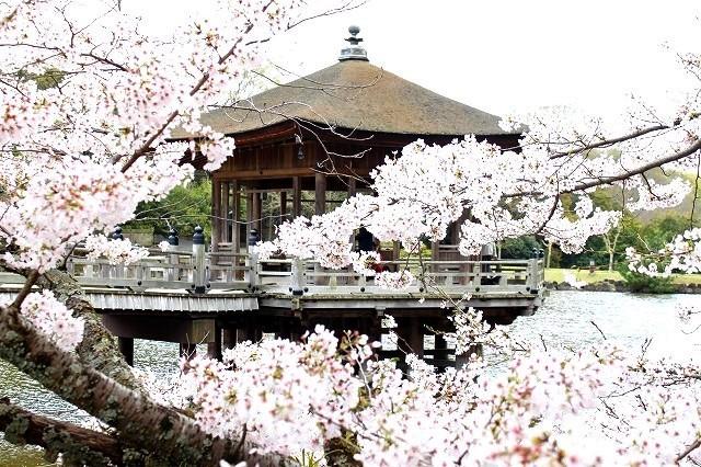 石上神宮から奈良へ_f0374092_21453184.jpg