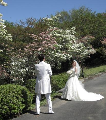 白ドレス&ライトブルードレスのブーケ♪_f0054809_10362525.jpg