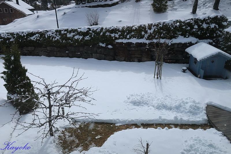 また雪_a0353839_21524057.jpg