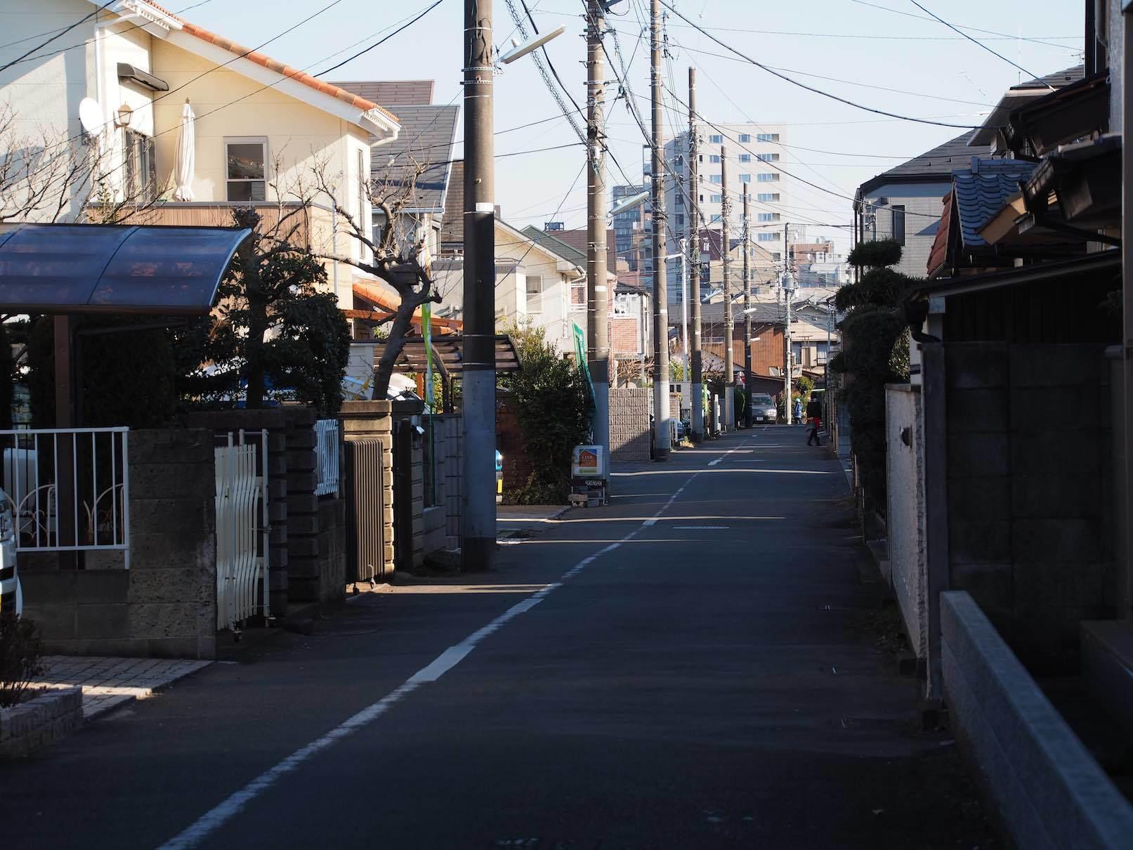 武蔵小金井駅周辺7_b0360240_22322596.jpg