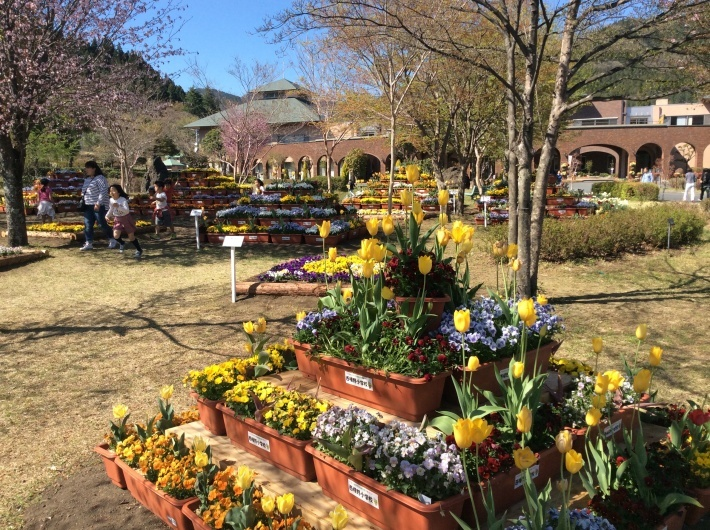 4/23(日)群馬県安中市観光大使フェスティバルありがとうございました!_e0056646_16394182.jpg