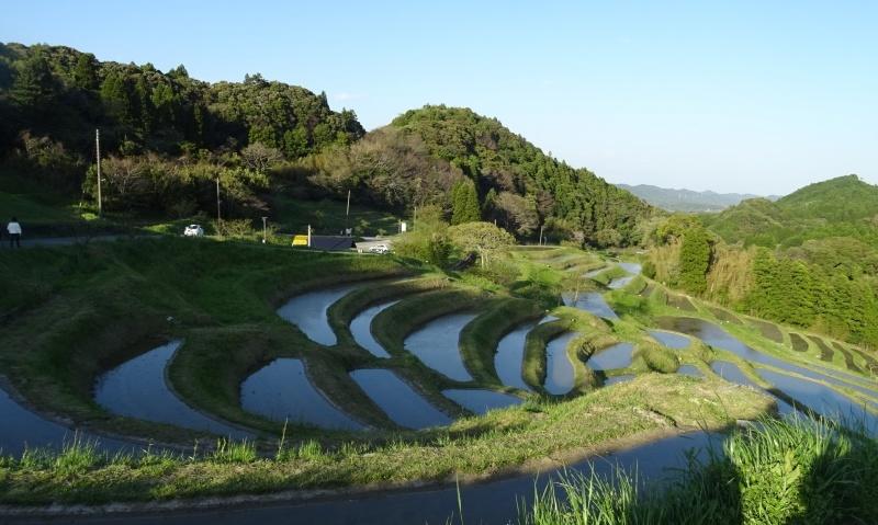 大山千枚田でブロ友さんと♪_b0236665_09293763.jpg