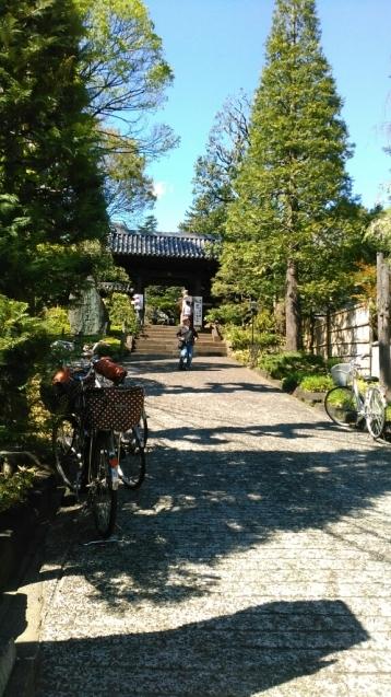 乙女山公園に散歩・・・続き1_c0162773_00323223.jpg